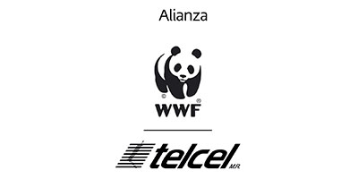 Alianza WWF and Telcel Logo