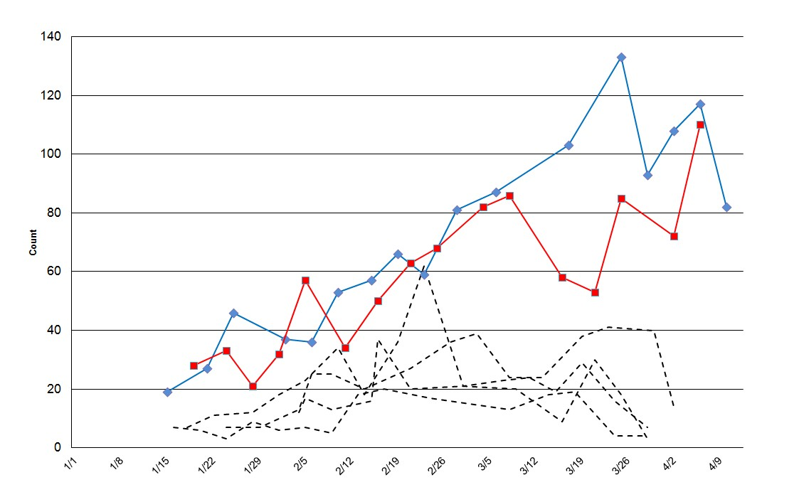 Figure 2. Counts of  mother-calf pairs in Laguna San Ignacio: Red = 2012; Blue = 2011; Dashed = 2007-2010.
