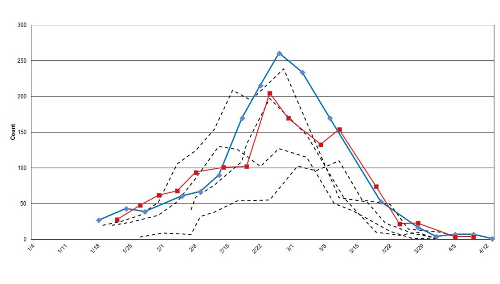 Figure 3. Counts of single gray whales in Laguna San Ignacio: Red = 2012; Blue = 2011; Dashed = 2007-2010.