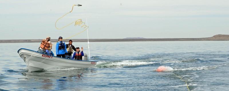 El taller salva a las ballenas en Laguna San Ignacio