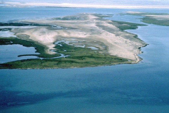 Aerial view of Abroa Island
