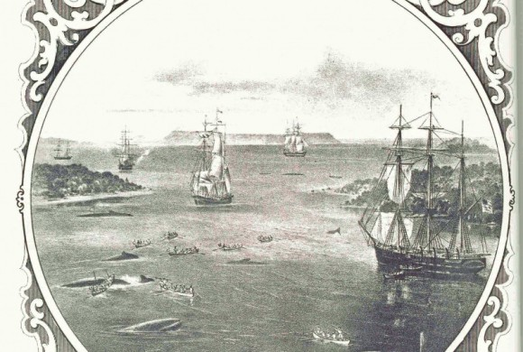 Print of multiple sailing ships in the lagoon spearing whales