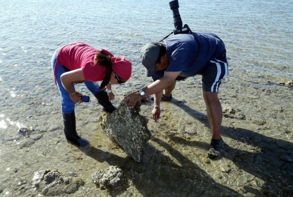Two researchers lifting up a rock