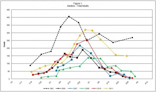 Total Adults Graph for 2011