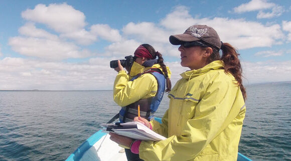 2021 UPDATE:  Photographic Identification: A Key to Understanding Gray Whales